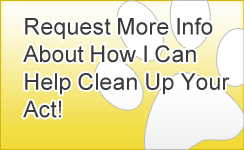 Request More Info About How I Can Help Clean Up Your Act! Banner